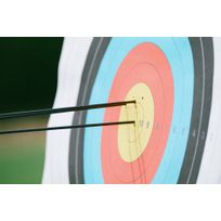 c4569c4b3 Alvo de papel para arco e flecha World Archery Geologic - DecathlonPro