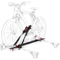 --big-bike-teto-velox-1