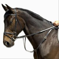 black-collar-and-martingale-fs-fs1