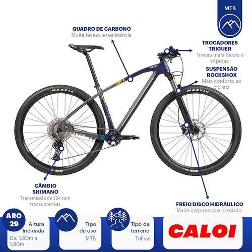 --caloi-carbon-ibex-l-G