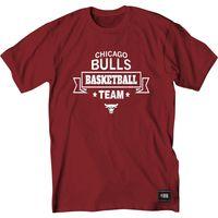 -camiseta-nba-chicago-basketball-tea-xl-G