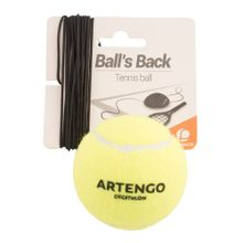 artengo-balls-back-ball-1